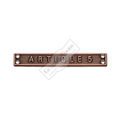 Article 5 - Bar #233-FS